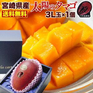 母の日 ギフト マンゴー ポイント10倍 宮崎マンゴー 太陽のタマゴ 特大3L玉(450g以上) 太陽のたまご JA西都協賛光センサー完全選果 mango 父の日 プレゼント