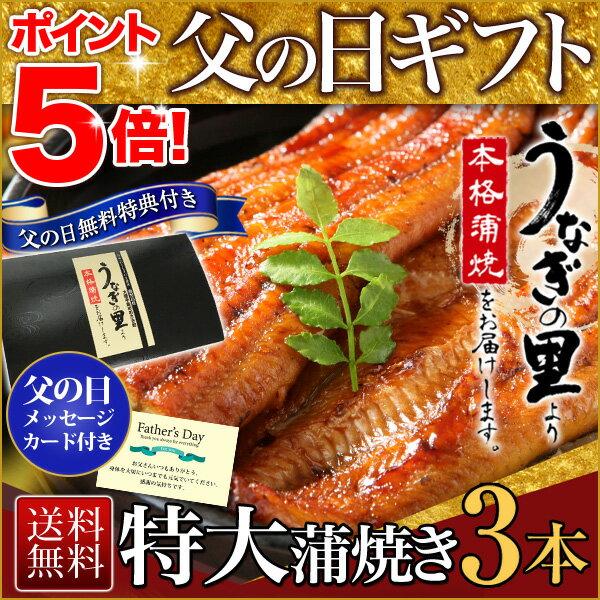 父の日 うなぎ グルメ 食べ物 蒲焼き 国産 鹿児島産 特大蒲焼き3本セット 約200g×3 うなぎの里 ギフト(鰻 ウナギ)