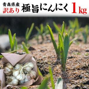 にんにく 訳あり 特別栽培 青森県産 1kg 5kg以上で送料無料 1キロ 希少 国産 常温