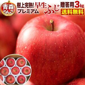 ポイント5倍 りんご 青森 津軽 早生ふじ 樹上完熟プレミアム 3kg(8〜12玉)贈答用 ギフト プレゼント 送料無料 農家直送 リンゴ 果物 フルーツ
