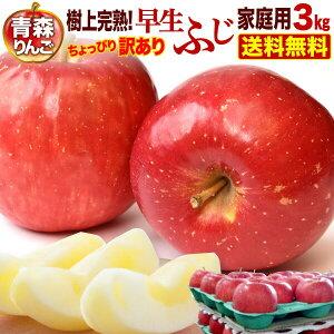 ポイント5倍 りんご 青森 津軽 早生ふじ 樹上完熟 ご家庭用 3kg(8〜12玉) ちょっぴり 訳あり 送料無料 農家直送 リンゴ 旬 果物 フルーツ