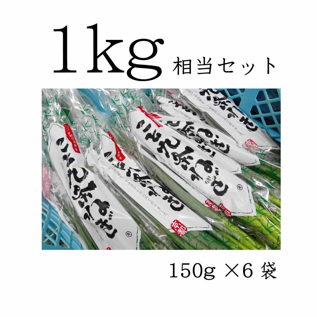 こと京都 【 九条ねぎ 原体 1kg(6袋分)相当セット 】(注意: 3月21日よりクール料金 ※ 11月頃まで )