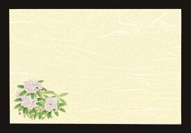 雲龍和紙テーブルマット花の郷 石楠花(100枚入)38×26cm※柄をハッキリとするため、BACKを黒色にしています。