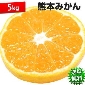 みかん 5kg 送料無料 訳あり 熊本県産 蜜柑 ミカン 柑橘 フルーツ