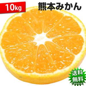 みかん 10kg 送料無料 訳あり 熊本県産 極早生は果皮が緑で小粒傾向 蜜柑 ミカン 柑橘 フルーツ【10月下旬頃より順次出荷開始予定】