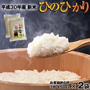 ひのひかり ポイント消化 新米 熊本県産 三合入り 約450g お試し 白米 令和元年産 送料無料