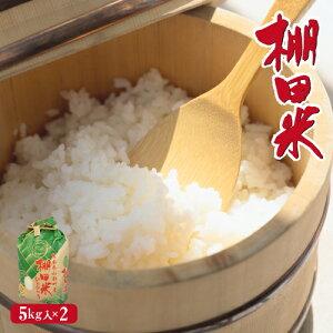 米 新米 送料無料 棚田米 ひのひかり 熊本県産 令和2年産 5kg x 2袋 計10kg