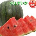 すいか 送料無料 小玉スイカ 熊本県産 ご自宅用 訳あり 2玉 約2.3kg~2.5kg