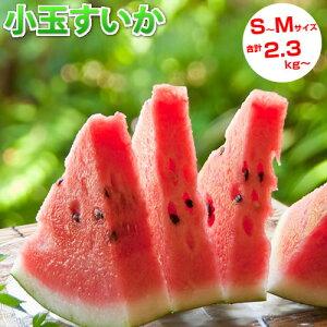 スイカ 送料無料 すいか 小玉すいか 熊本県産 ご自宅用 訳あり 2玉 計約2.3kg~2.5kg S~Mサイズ