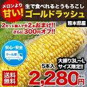 【日本最速級出荷のトウモロコシ】ゴールドラッシュ送料無料★《1セット5本入り》2セットで+2本増量※複数セットご購…