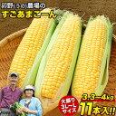 生でも甘い トウモロコシ 卯野農場 の すごあまこーん 11本入り (3L~L サイズ) 約3.3kg-約4kg前後 とうもろこし 送料…