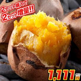 安納芋 訳あり 1kg 送料無料 種子島産 長期熟成 通販 取り寄せ 焼き芋 3セットで3セットおまけ増量 (サイズ大中小不揃い) あんのういも 《3-7営業日以内に出荷予定(土日祝日除く)》
