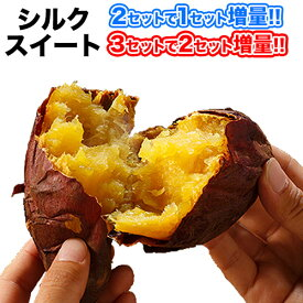 さつまいも 熊本県産 シルクスイート 1kg 送料無料 (サイズ大中小不揃い)【2セットで1セット分★3セットなら+2セット増量】※複数購入の際は1箱におまとめ配送 《12月上旬-12月下旬頃順次出荷》