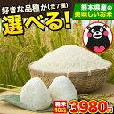 西日本有数の米どころ 熊本県産 選べる 米 お米 10kg 森のくまさん コシヒカリ 全7品種 選べる お米セット 送料無料 …