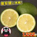 【ランキング1位獲得!!】 国産 レモン 最安値に挑戦 熊本県産 1.5kg 訳あり 送料無料 (約5玉-15玉前後) 2セット購入で…