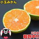 小玉 みかん 2kg 訳あり 送料無料 熊本 3s~s 2s サイズ 小粒 みかん小粒 温州 家庭用 果物 柑橘 九州 産地直送 食品 …