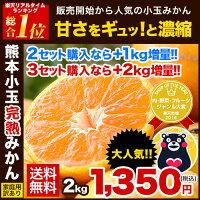\緊急確保★2セット購入で100円...