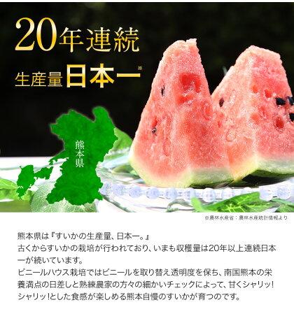 【訳あり】日本一の産地・熊本産ジャンボすいか1玉(約6.8kg前後-約8kg前後)!甘くてみずみずしい♪《7-14営業日以内に出荷(土日祝日除く)》送料無料