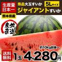 【送料無料】【秀品】スイカ日本一の産地・熊本産ジャイアントすいか1玉(約10kg前後〜)!甘くてみずみずしい♪《7-14営業日以内に出荷》