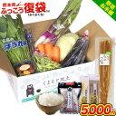 【被災直売所 復興応援】復興 福袋 ふっこう復袋 熊本 県産 旬の 野菜 セット 熊本県産米5kg お米 ごぼう うどん そば…