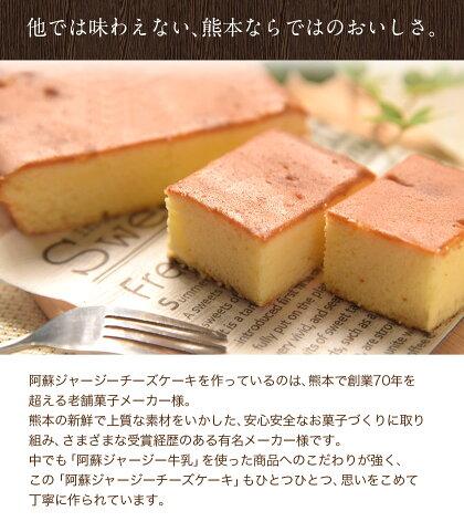 阿蘇ジャージーチーズケーキ1個希少なジャージー牛乳使用2個購入で1個オマケ送料無料スイーツ《3-7営業日以内に出荷(土日祝日除く)》