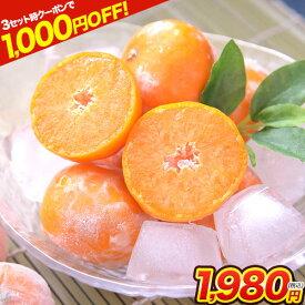 【ダブルクーポンで最大1,000円OFF!!】熊本県産 冷凍 小玉 みかん 皮付き 1.5kg 500g×3袋 送料無料 2s~3s 2s 3sサイズ フルーツ 小玉 冷凍みかん 果物 柑橘 食品 取り寄せ 通販 アイス シャーベット 2セットで1セットおまけ 《1-5営業日以内に出荷予定(土日祝日除く)》
