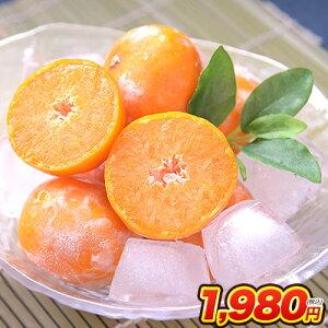冷凍みかん 熊本県産 冷凍 小玉 みかん 皮付き 1.5kg 500g×3袋 送料無料 2s~3s 2s 3sサイズ フルーツ 小玉 果物 柑橘 取り寄せ 通販 アイス シャーベット 2セットで1セットおまけ 【《1-5営業日以内