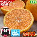 訳あり デコみかん 1.5kg 送料無料 みかん ミカン デコポン でこぽん 同品種 熊本県産 柑橘 お取り寄せ お取り寄せグ…
