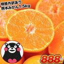 熊本 みかん 1セット 1.5kg 送料無料 規格外 訳あり 2セットで1セットおまけ フルーツ 訳ありみかん 温州 家庭用 果物…