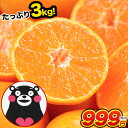熊本 みかん 1セット 3kg 規格外 訳あり 2セットで送料無料 フルーツ 訳ありみかん 温州 家庭用 果物 柑橘 九州 産地…