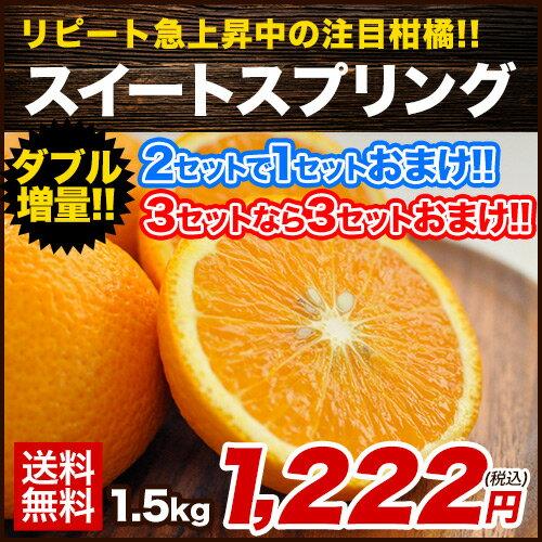【送料無料】【熊本県産】新種の柑橘!スイートスプリング 1.5kg (3L〜Lサイズ/3L-L混合) ※複数購入の場合1箱におまとめ配送《7-14営業日以内に出荷予定(土日祝日除く)》