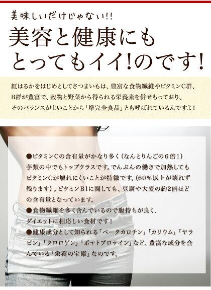 【送料無料】さつまいも熊本県産シルクスイート1kg(サイズ大中小不揃い)おうち時間焼き芋お取り寄せお取り寄せグルメ《3-7営業日以内に出荷予定(土日祝日除く)》【2セットで1セット分★3セットなら+2セット増量】