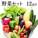 自家用野菜セット【送料無料】九州(熊本)の安心・安全★旬の野菜を たっぷり12品!《7〜14営業日以内に出荷(土日祝…