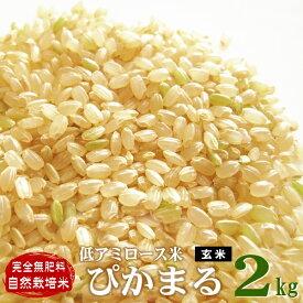 低アミロース米 ぴかまる 熊本県産 玄米2kg 令和元年産 完全無肥料 自然栽培米 【農薬・化学肥料不使用】【自社農園産 新米】
