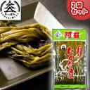 【送料無料】九州熊本の逸品 阿蘇高菜漬け 厳選手折り 姿 300g×2 伝統の製法にこだわり続ける阿蘇の老舗たかな…