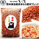 熊本菊池産赤米もち麦Wブレンド500g ポリフェノール抜群の赤米と食物繊維抜群のもち麦だけを贅沢にブレンド 無・減…