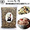 熊本産古代米もち麦Wブレンド500g 栄養バランス抜群の古代米と食物繊維抜群のもち麦だけを贅沢にブレンド 雑穀米 …