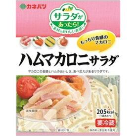 【冷蔵】カネハツ ミニ ハムマカロニサラダ 110g×10袋【賞味期限 お届けより26日前後】 ZHT