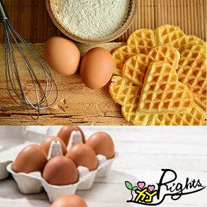 【冷蔵】国産 卵 あそぼらん 30個
