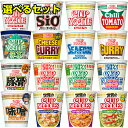 日清 カップヌードル 16種から選べるカップ麺 40個セット(4個単位選択) NCUPN