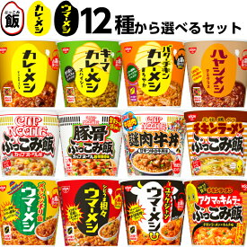 日清 カレーメシ ウマーメシ ぶっこみ飯 カップご飯 12種から2個単位で選べる 24個セット