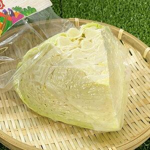 時短食材 キャベツ1/4 カット野菜BBQ 通販 野菜セット 詰め合わせ 九州 お買い得 コロナ 対策