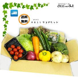 新鮮 お野菜サラダセット 10品以上 野菜セット 送料無料 九州の市場から新鮮野菜をお届け。詰め合わせ サラダ 野菜 野菜セット 詰め合わせセット 詰め合せ 詰合わせ 通販 九州 お買い得 お試しコロナ 対策 通販 おすすめ お買い得 一人暮らし つめあわせ