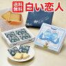 白い恋人 ホワイト12枚入り 北海道土産ISHIYA(石屋製菓)ホワイトデ...