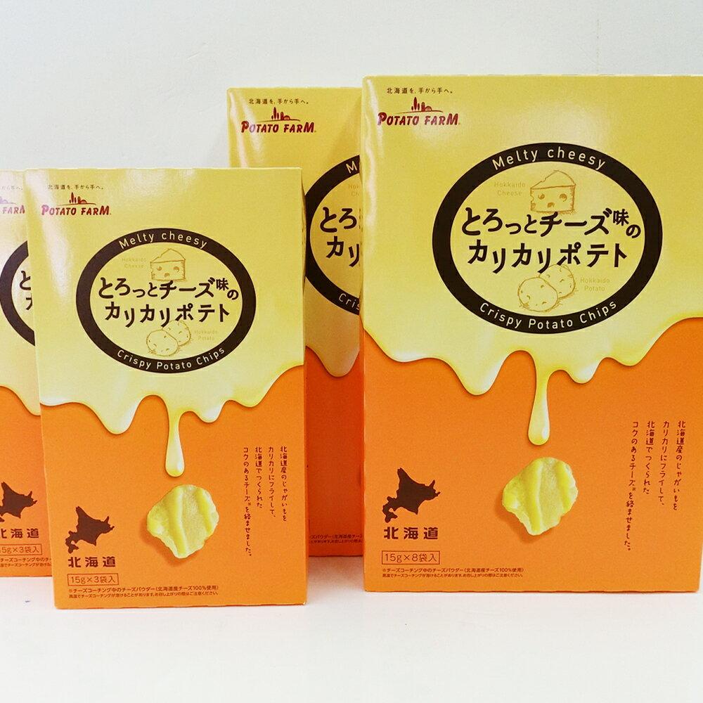 カルビーポテトファーム とろっとチーズ味のカリカリポテト15g×3袋入り小箱×2個と15g×8袋大箱×2の計4個セット 福袋