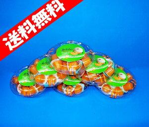 シャーベリアス夕張メロンミニ(18個入り)×6パック