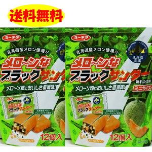 ブラックサンダーメロン味 2袋セット 計2袋 送料無料