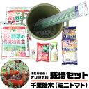【送料無料!】 イクセイ(ikusei)オリジナル 千果接木(ミニトマト)栽培セット 初めての家庭菜園にオールインワン…