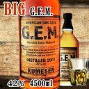BIG G.E.M. 4500ml 42度 GEM ジェム ウイスキー 焼酎 泡盛 琉球泡盛