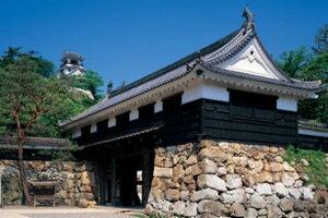1000ピース 日本風景 追手門から高知城(高知県高知市)